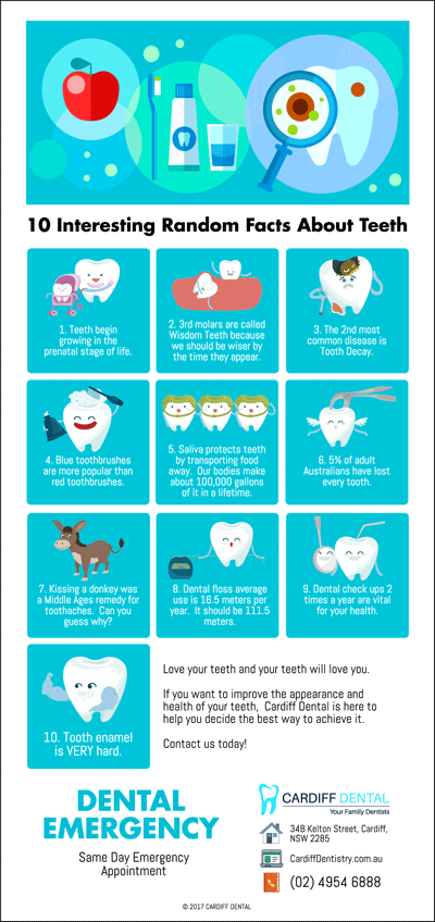 10 Interesting Factoids About Your Teeth